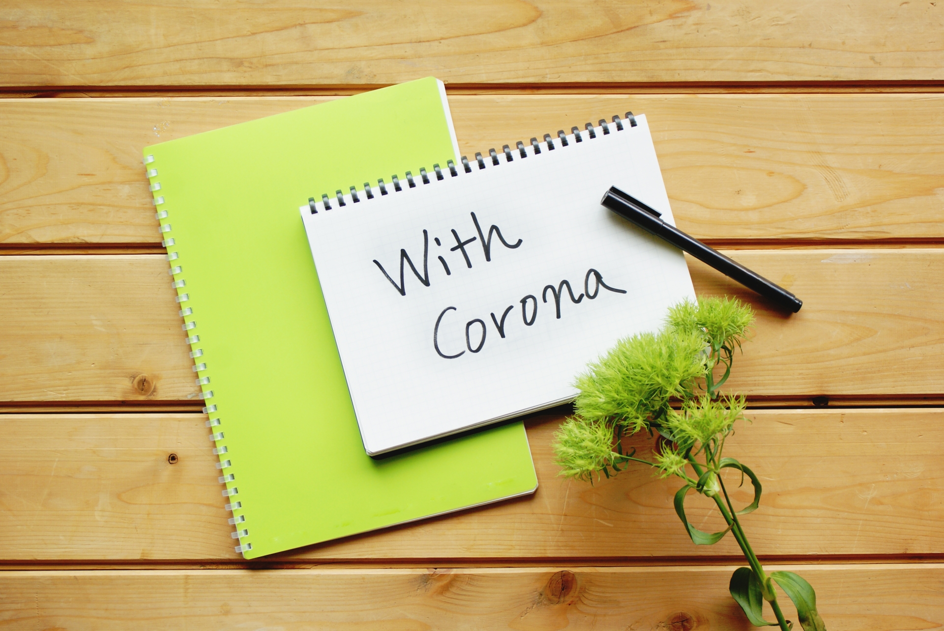 新型コロナウイルス感染拡大に伴う弊社対応について